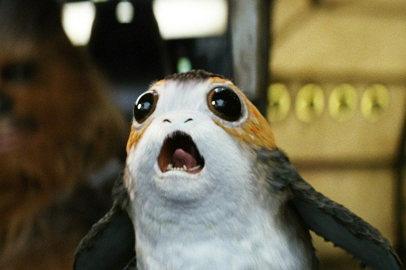 porg-star-wars-the-last-jedi