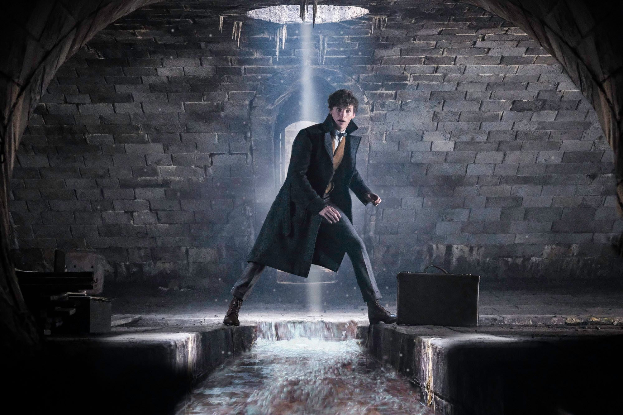 Fantastic Beasts scoop: All 5 movies will be set in different cities