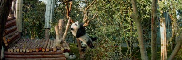 pandas-slice
