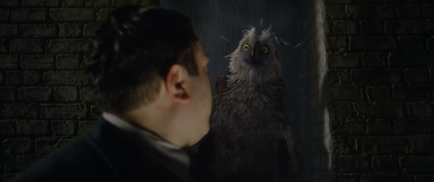 Fantastic Beasts 2 Creatures Explained: From Augureys to