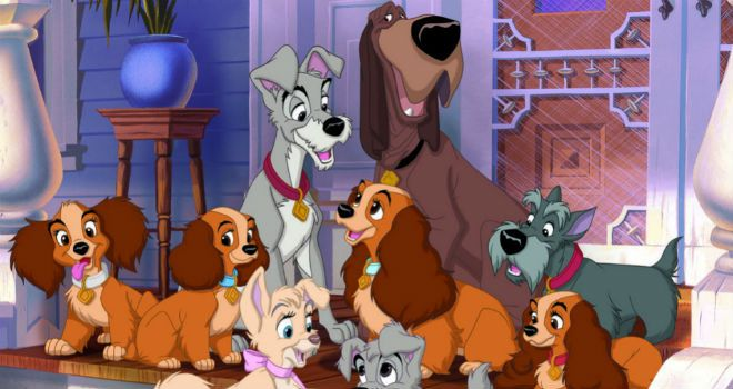 Charlie Bean to Direct Live-Action Lady and the Tramp Remake