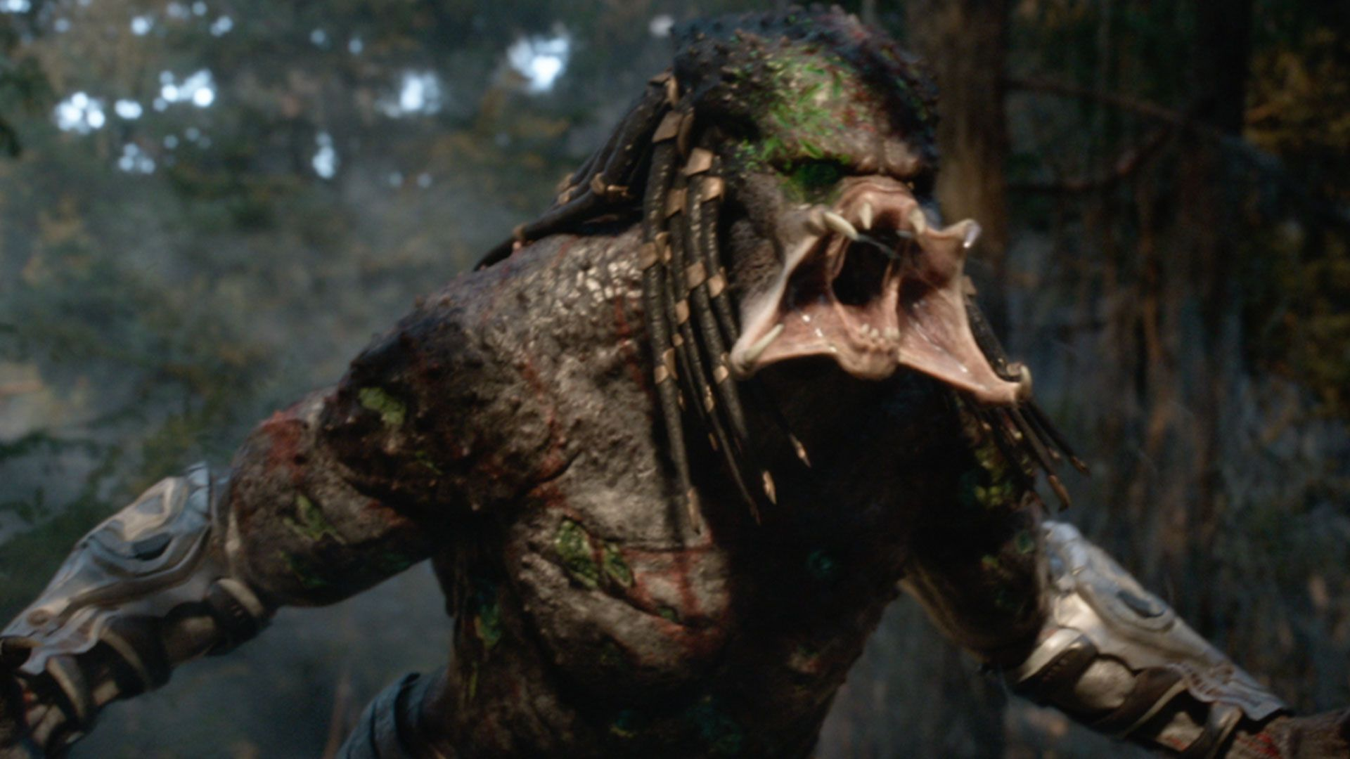 The predator review the hunt is on and its a messy mixed bag collider