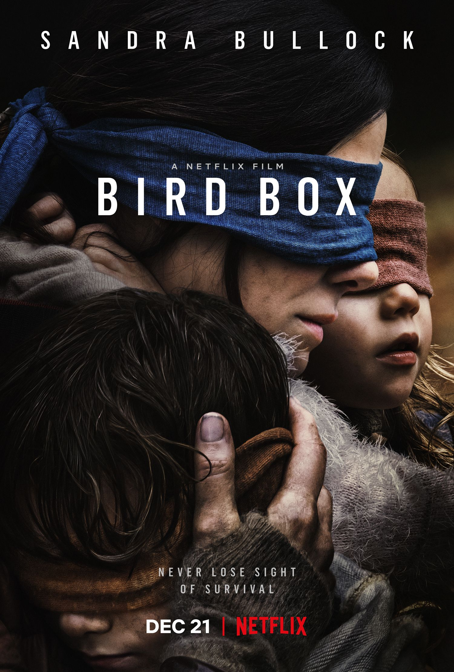 Bird Box Ending Explained: A Test of Motherhood and Survival