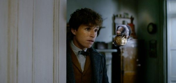 fantastic-beasts-the-crimes-of-grindelwald-baby-niffler-newt