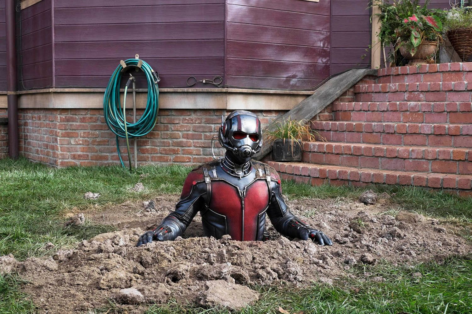 Why Adam Mckay Didnt Direct Ant Man Collider