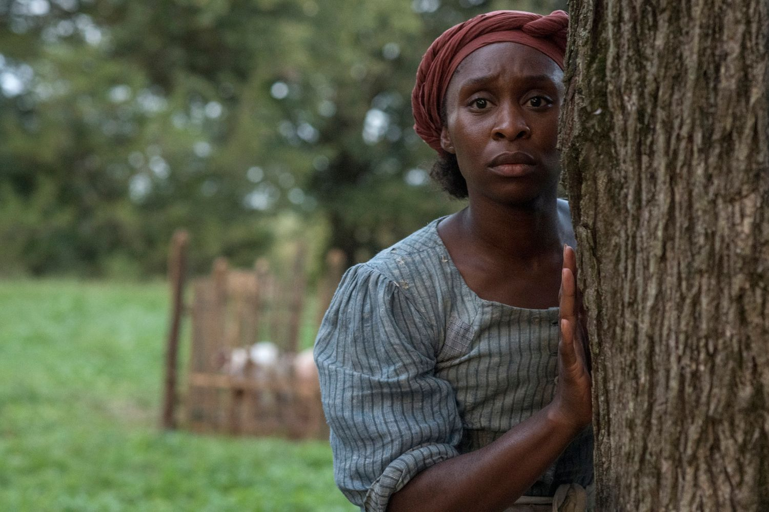 First Look at Cynthia Erivo as Harriet Tubman in Focus Features Biopic 'Harriet'
