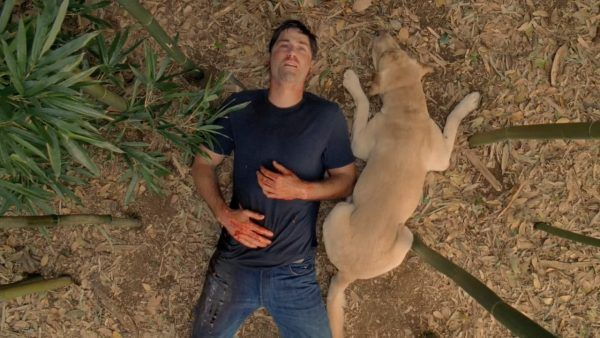 lost-finale-matthew-fox