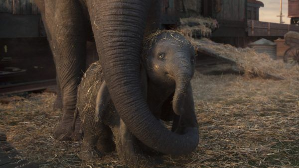 dumbo-live-action-image