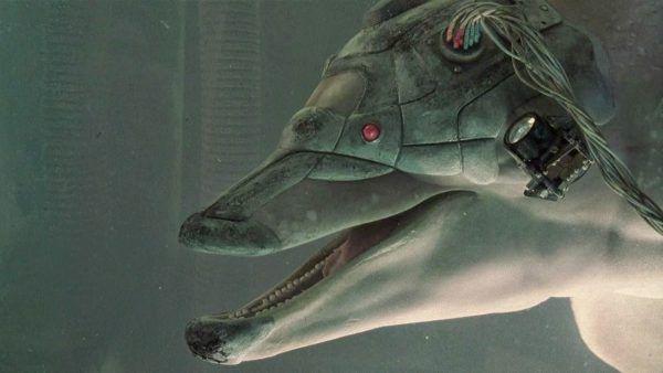johnny-mnemonic-dolphin