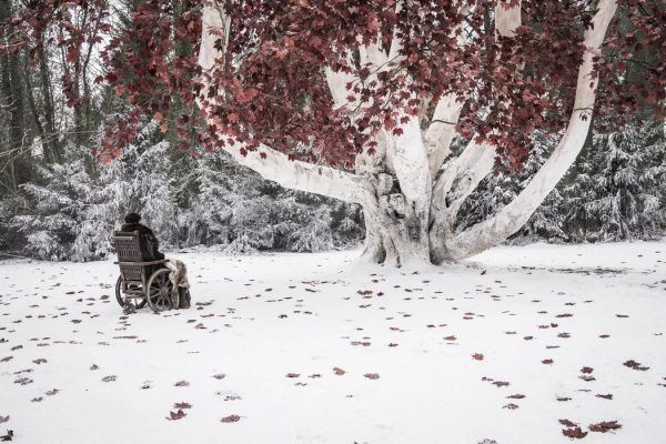 game-of-thrones-season-8-episode-2-images-bran-heart-tree