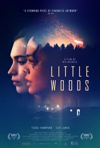 little-woods-poster