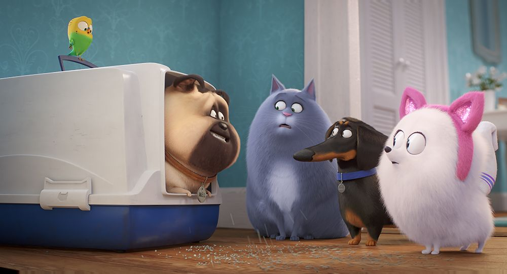 Illumination Entertainment Movies Ranked from Worst to Best | Collider