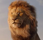 the-lion-king-adult-simba-thumbnail