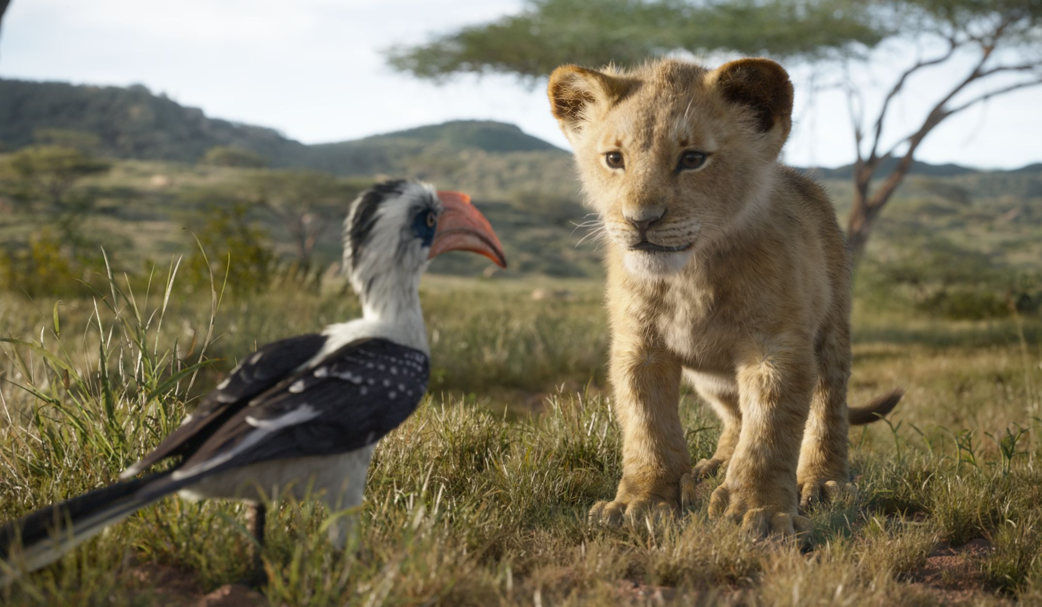 How 2019s The Lion King Was Shot Like A Live Action Movie