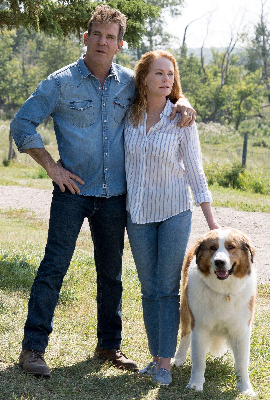 Movie Trend A Dogs Journey This Year @KoolGadgetz.com