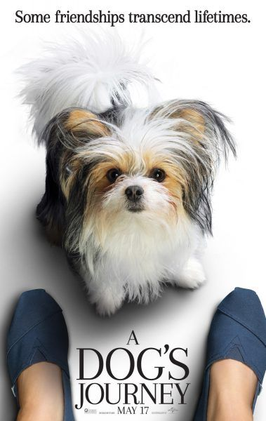a-dogs-journey-poster