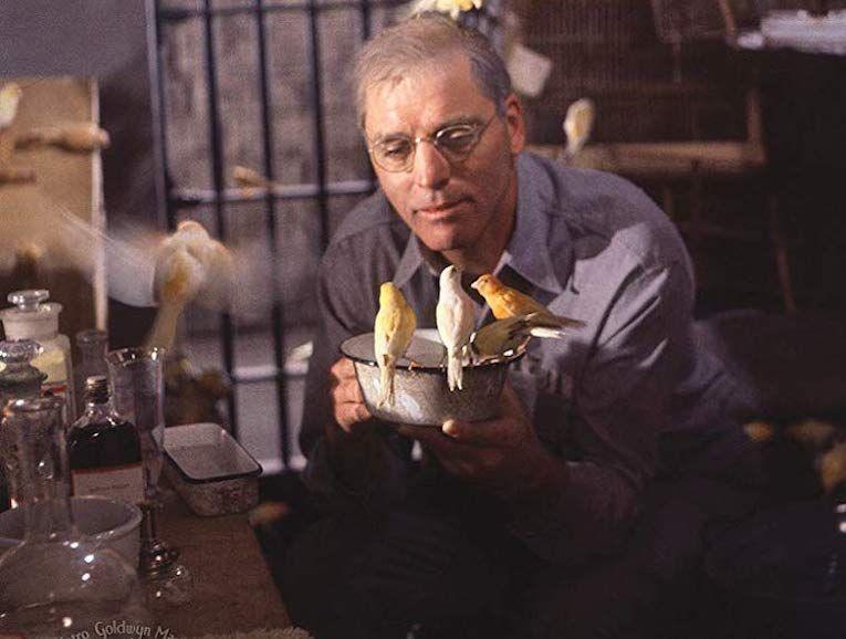 birdman-of-alkatraz1