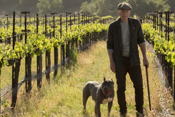 Patrick Stewart as Jean-Luc Picard with his dog in Star Trek: Picard