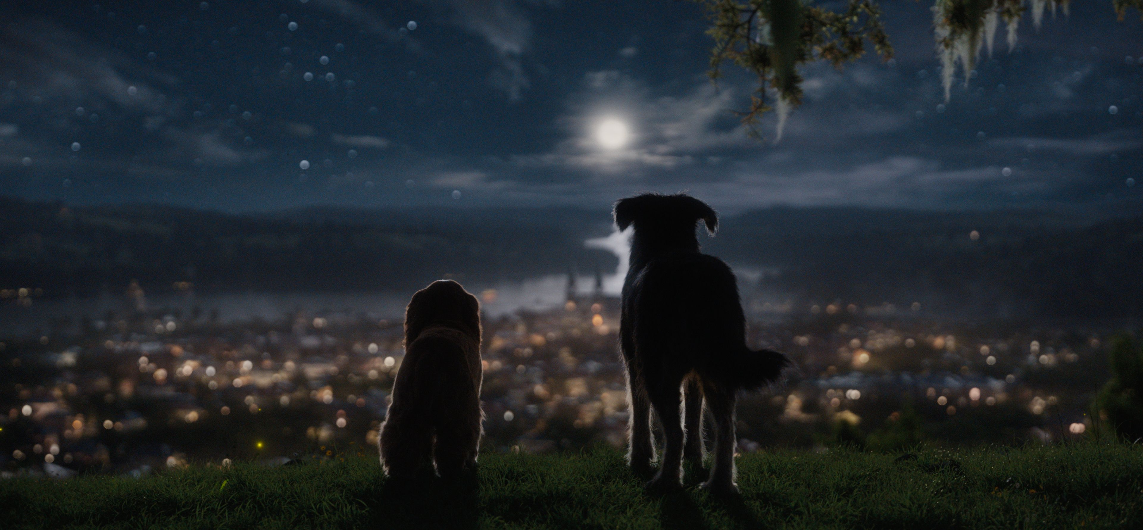 Lady And The Tramp Review An Inoffensive Remake For Disney Plus Collider