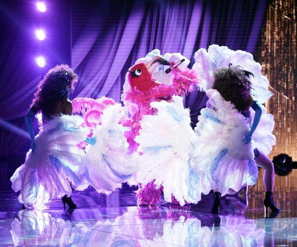 masked-singer-flamingo-episode-9