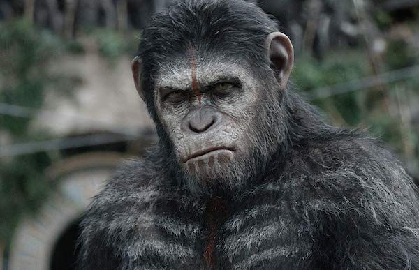 planet-of-the-apes-andy-serkis-caesar