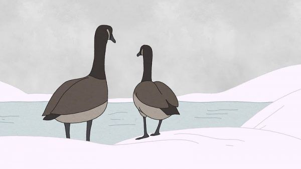 hudson-geese-sundance