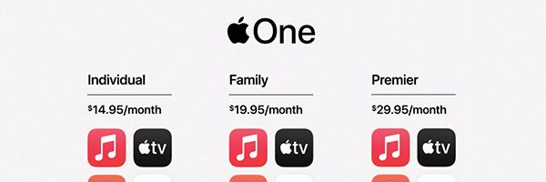 apple-one-slice