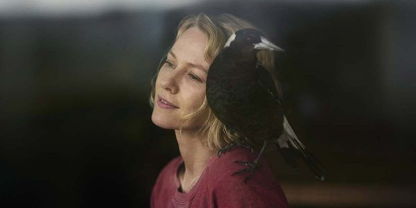 pingouin-bloom-naomi-watts