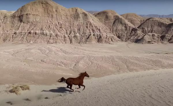 emmanuel-lubezski-iphone-12-pro-horse-desert