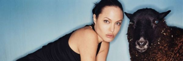 angelina-jolie-fifty-shades-of-grey-slice