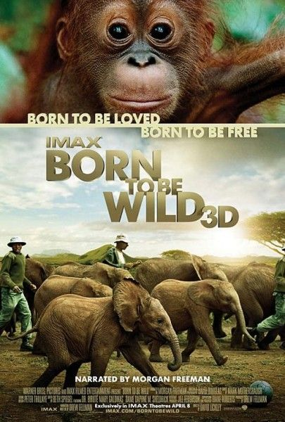 born-to-be-wild-poster