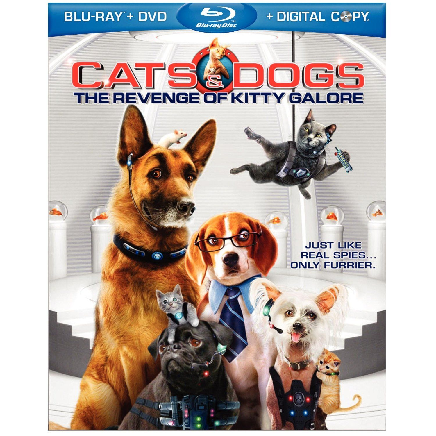 CATS & DOGS THE REVENGE OF KITTY GALORE Blu ray Review
