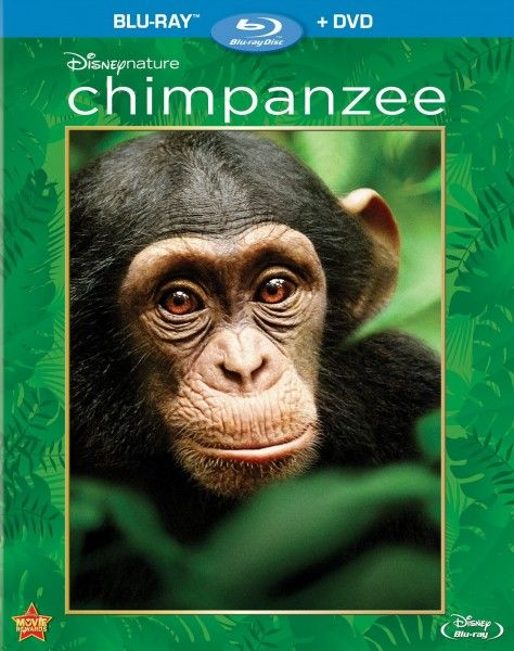 chimpanzee-blu-ray