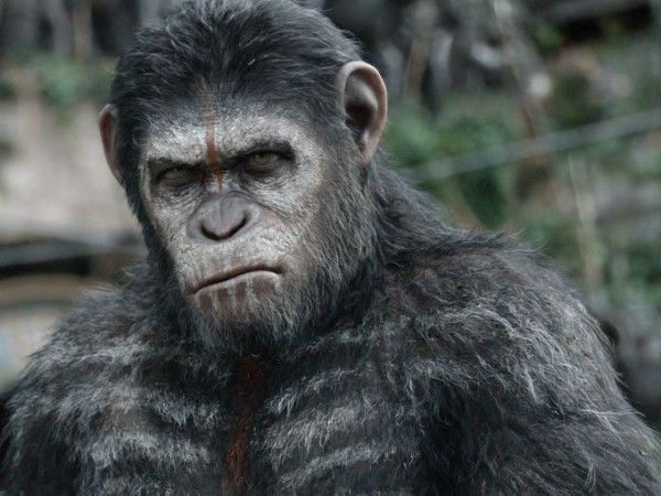 dawn-of-the-planet-of-the-apes-caesar-1