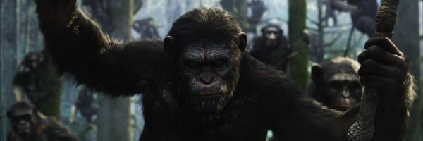 dawn-of-the-planet-of-the-apes-sequel