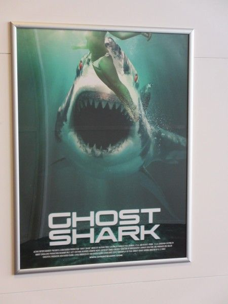 ghost-shark-cannes-poster