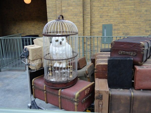 harry-potter-diagon-alley-hogwarts-express-owl
