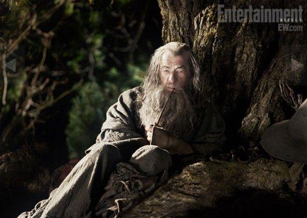 ian-mckellan-the-hobbit-movie-image