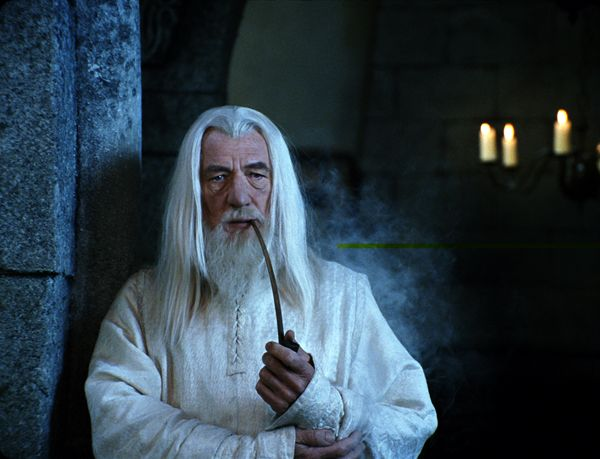 ian_mckellen_as_gandalf_lord_of_the_rings__1_