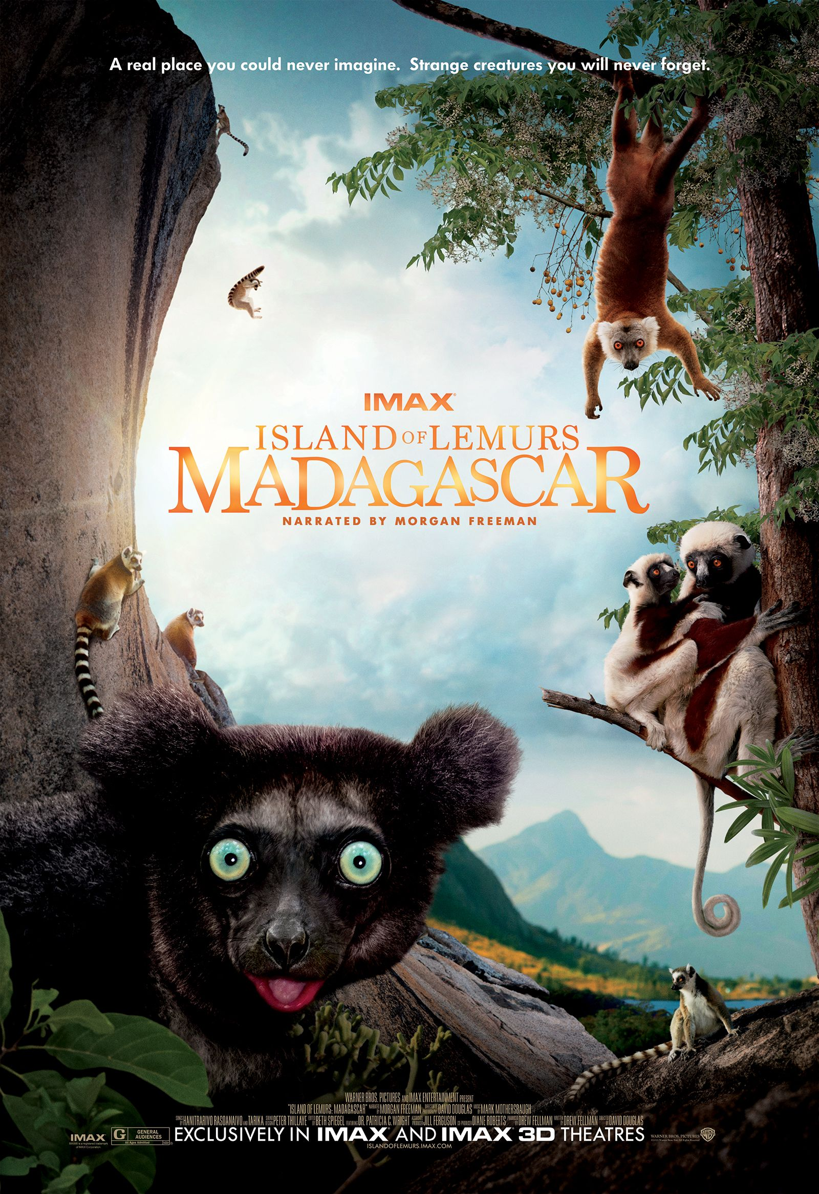 Madagascar 3 Lemur Song lemurs in Madagascar