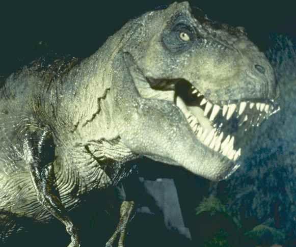 jurassic-park-movie-image-t-rex-01