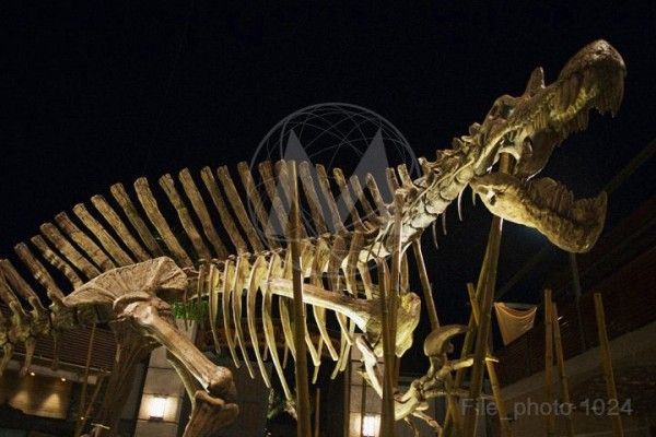 jurassic-world-dinosaur