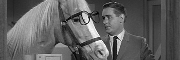 Fox 2000 readies mr ed feature film