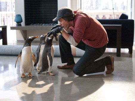 mr-poppers-penguins-movie-image-jim-carrey-01
