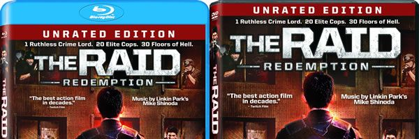 raid-redemption-blu-ray-dvd-art-slice