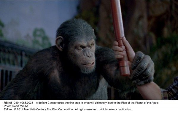 rise-of-the-planet-of-the-apes-movie-image-03