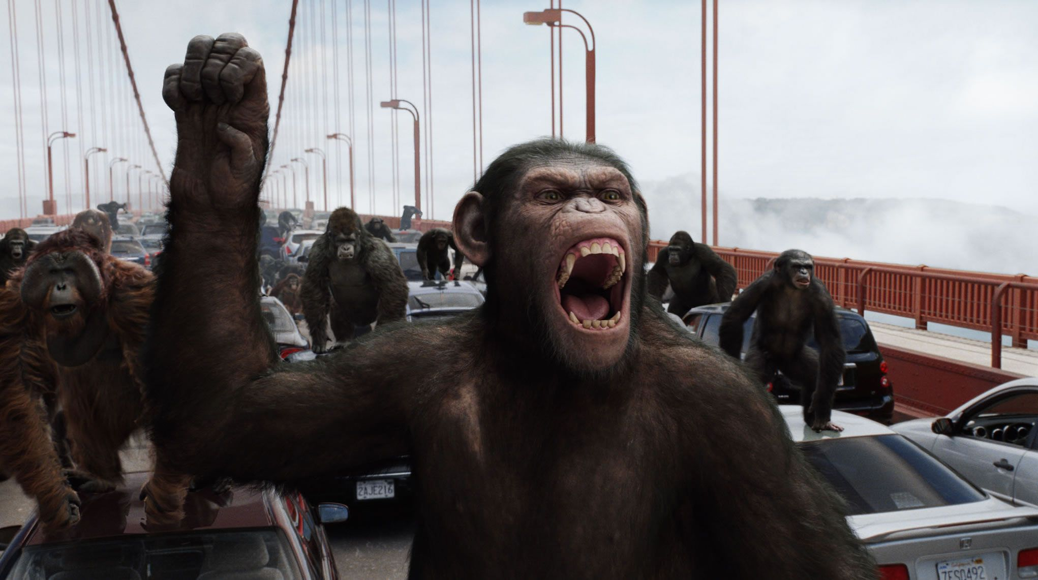 Apes Movie 2012 Planet-of-the-apes-movie