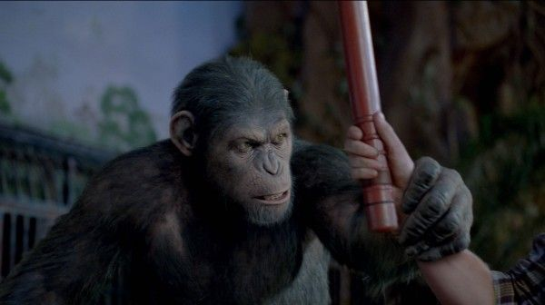 sequel-rise-of-the-planet-of-the-apes-movie-image