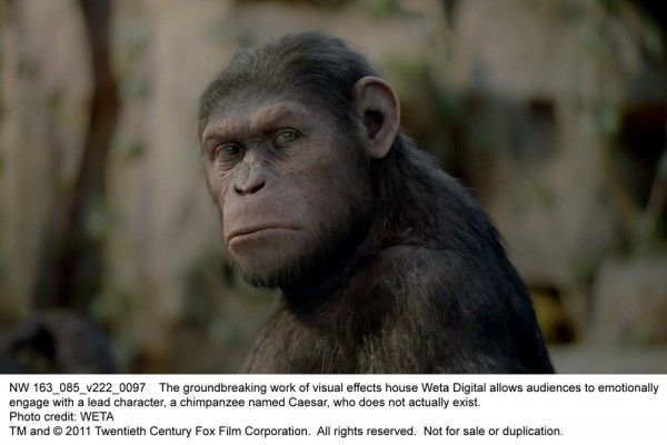 rise-of-the-planet-of-the-apes-movie-image-05