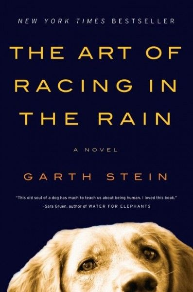 the-art-of-racing-in-the-rain-book-cover